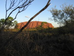 41 Ayers Rock